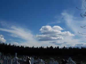 Cementerio de Santa Barbara-Biobio Chile.